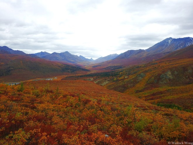 """Tombstone Valley Photo for """"Autumn Fire"""" poem by Winluck Wong, NB freelance writer"""